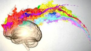cerebro y color